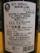他の写真1: 玉川 自然仕込 山廃純米酒 ヴィンテージ 2016BY 1800ml 木下酒造